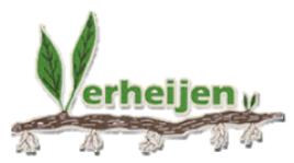SEO geoptimaliseerde responsive website voor Verheijen Plants uit Wieringerwerf