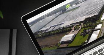 Meertalige rsponsive website voor Plantenkwekerij Gitzels