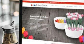 Nieuwe website voor Brilliant Dutch