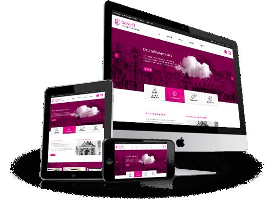 Responsive website op maat